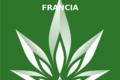 Francia: cannabis terapeutica. Parte la sperimentazione