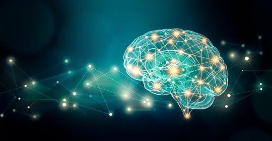 Disturbo di personalità borderline: anomalie funzionali e strutturali del cervello