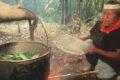 Come funziona una cerimonia con l'ayahuasca